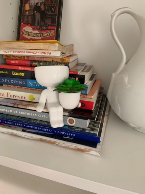 airplant holder on books