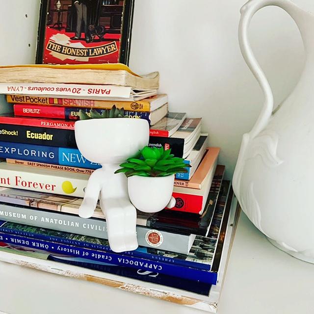 little man airplant holder on books