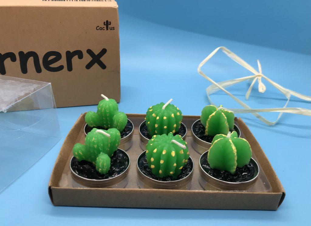 Cactus tea lights unboxed
